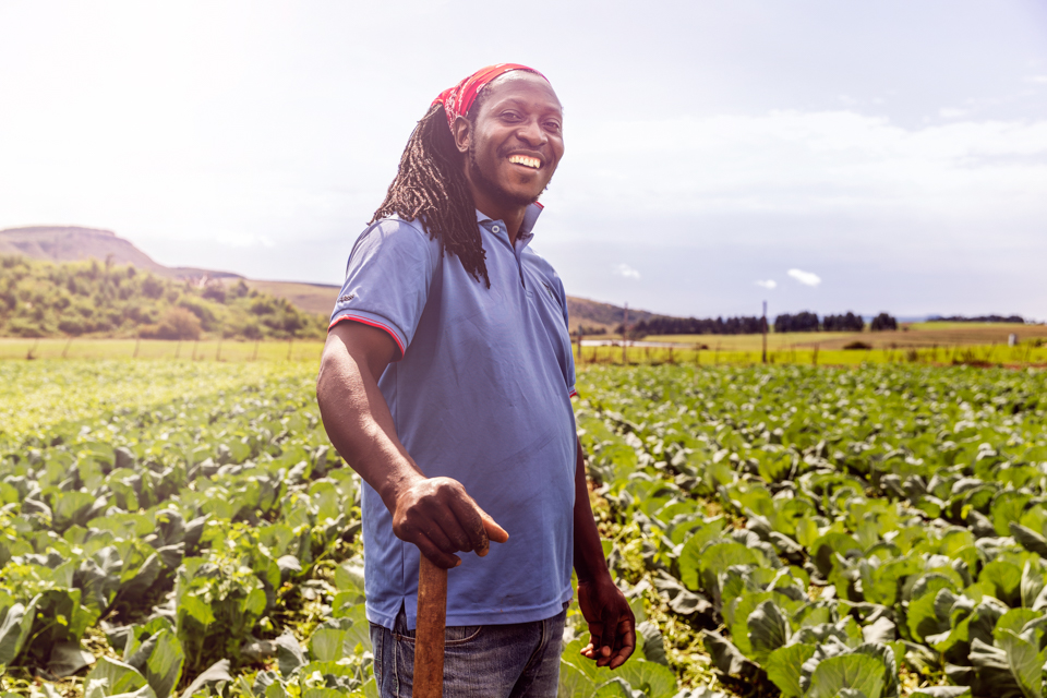 Igor Emmerich, South Africa, Farm, farmer, black, man,  African, sunny, cabbage, happy, proud, positive, warm