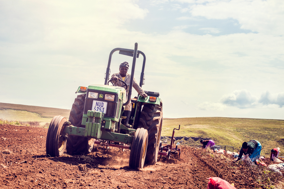 Igor Emmerich, South Africa, farm, farming, machine, sunny, truck, tractor, potatoes, warm, digging